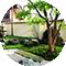 庭園用の苔